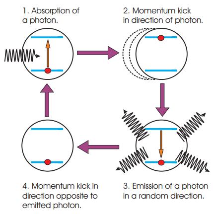 aborption1